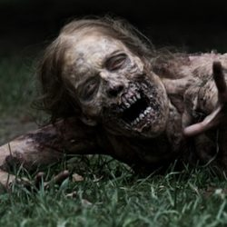 More Walking Dead News