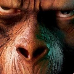 Episode 014: Going Ape (SPOILERS!)/SciFi Duds