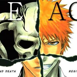 Bleach Movie Moves Forward With Get Smart Director